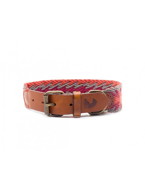 Peruvian Arrow orange dog collar