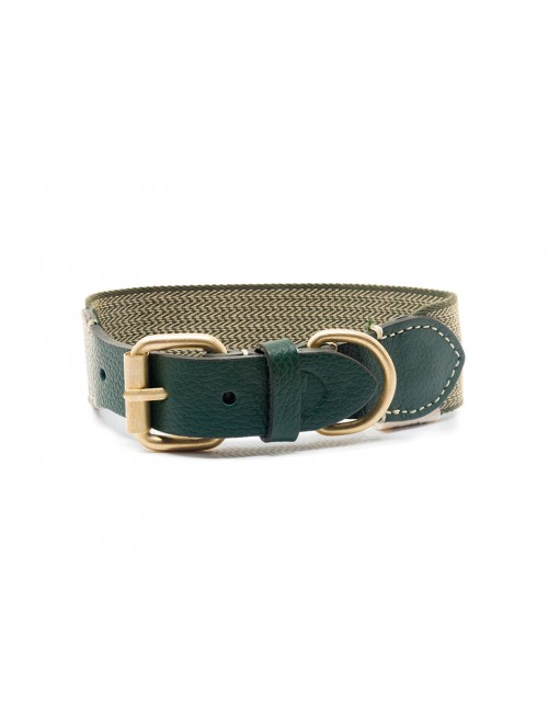 James green dog collar