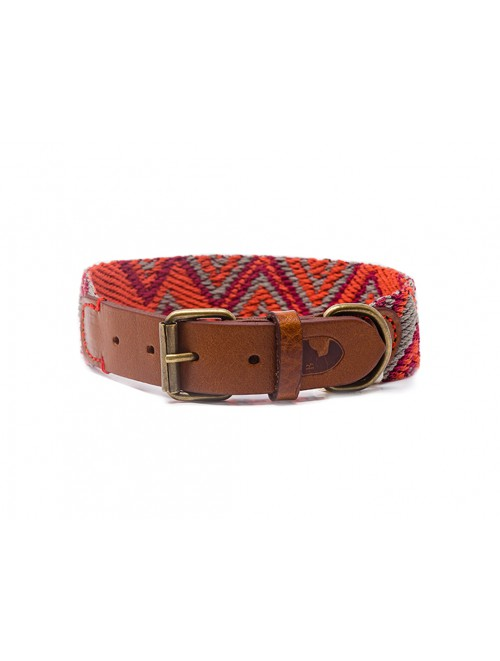 Peruvian Pikes dog collar