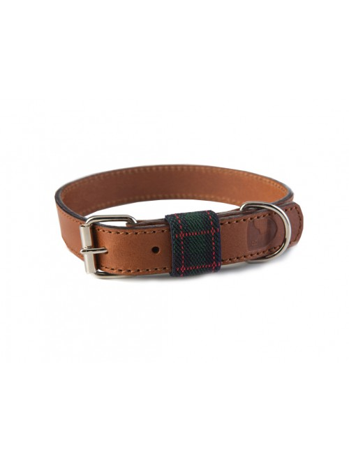 Edimburgh green dog collar