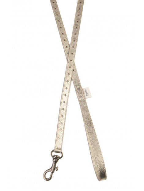 GoldStar dog lead