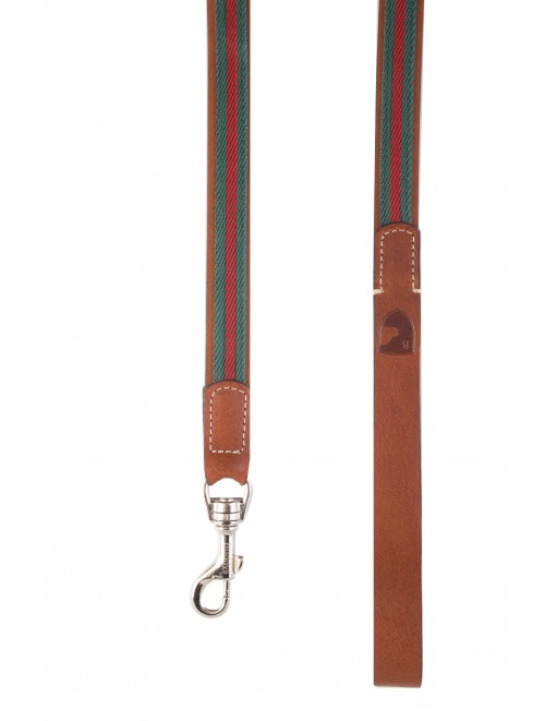 Baseball green dog lead
