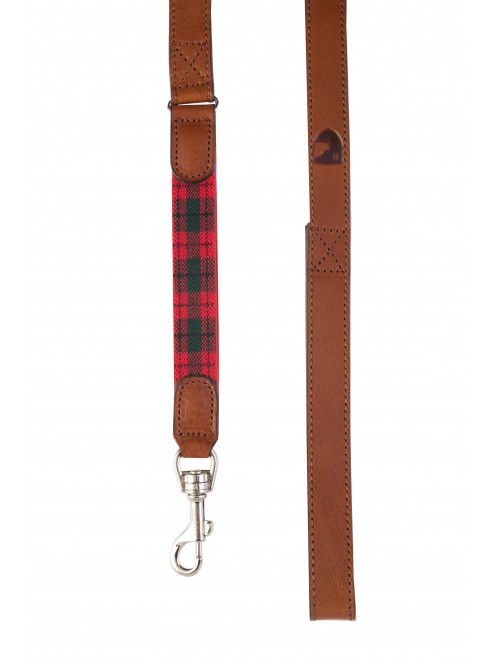 Edimburgh red dog lead