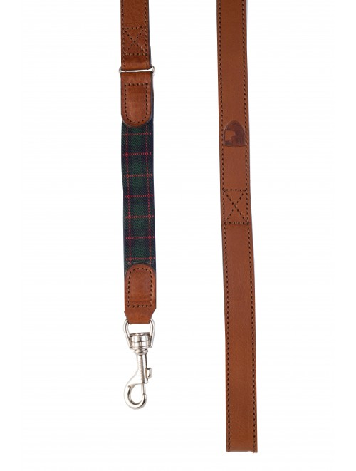 Edimburgh green dog lead