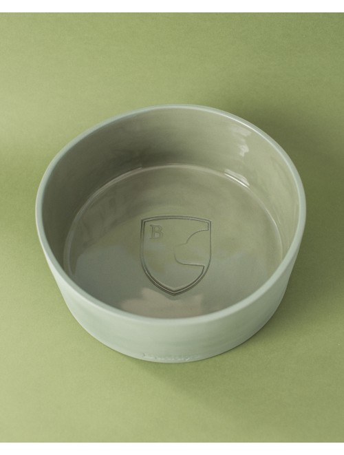Dog Bowl Green